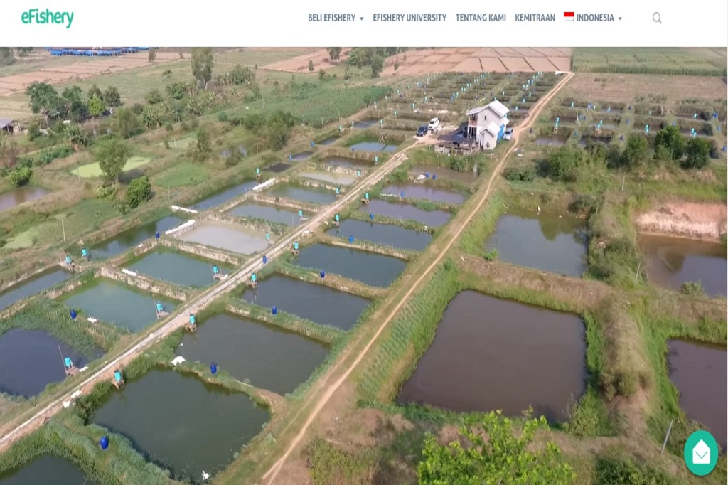 petani ikan picture