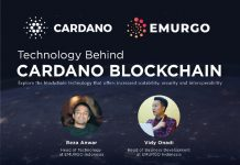 technology behind cardano picture