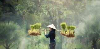 bantu kesejahteraan petani picture