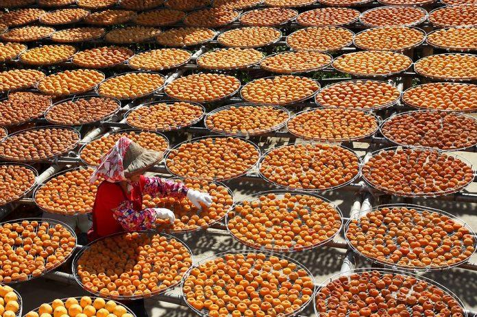 Jeruk Mandarin picture