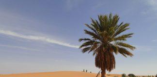 Republik Mauritania