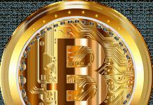 Pengguna Bitcoin picture