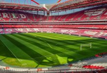 Benfica picture