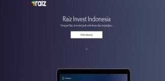 raiz invest picture