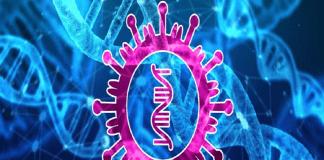 Penanganan Virus Corona dengan Blockchain picture